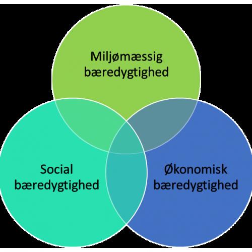Bæredygtighed cirkler